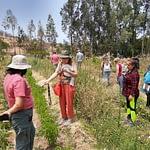 Mentoría Grupal sobre agroecología en Melipilla