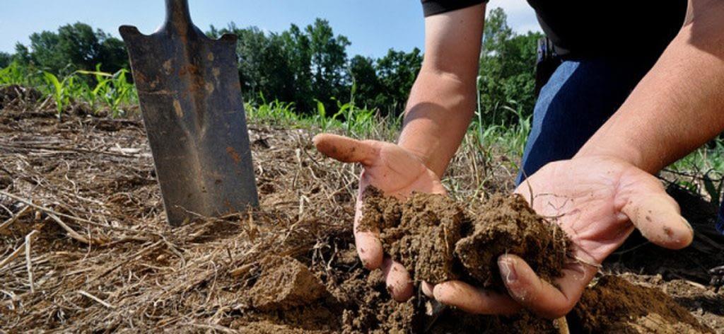 #Consejos al Productor para la preparación de suelos.