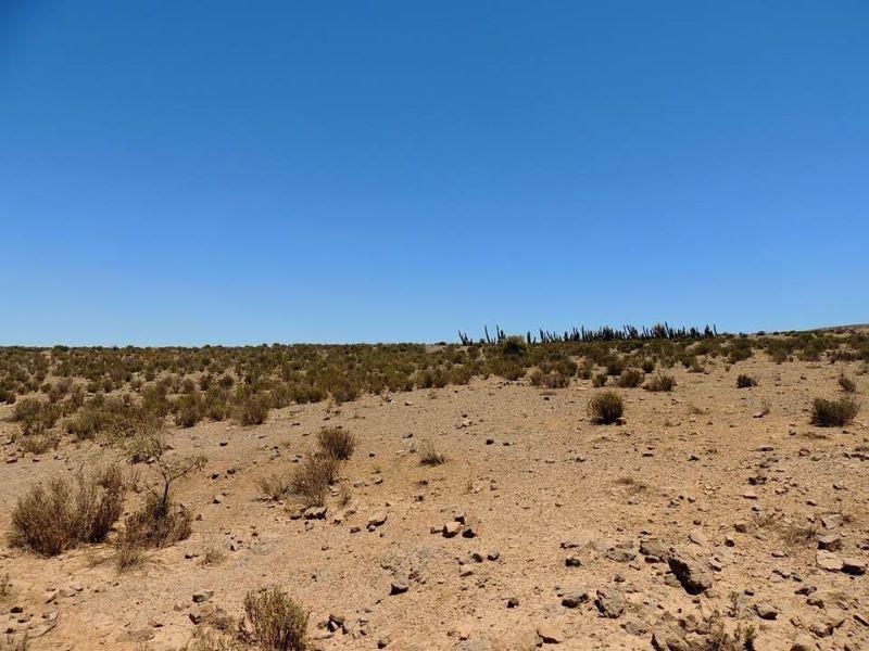 Sequía: desafíos hacia un futuro con menos agua