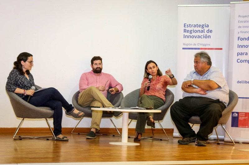 Proyecto FIC rescata valor patrimonial del vino chileno