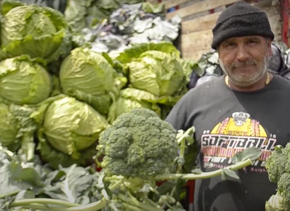 Con éxito cierra proyecto que mejora la calidad e inocuidad de alimentos