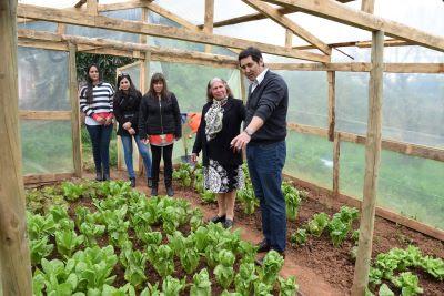 Profesora Sofía Boza encabeza capacitación nacional para huertos familiares de autoconsumo